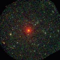 856_estrella-tambaleante.jpg